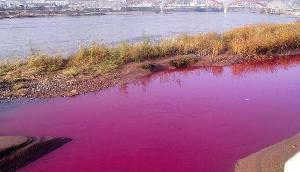 गुलाबी शहर के बाद मिली गुलाबी नदी...रंग बदलना है इसकी फितरत