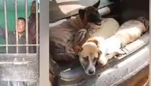 कुत्तों की तस्करी के आरोप में 2 गिरफ्तार, कत्लखाना में बेचने का था प्लान