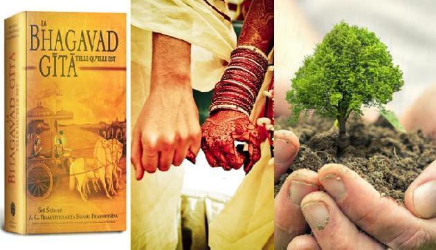 अनोखी शादी: आमंत्रण में कार्ड के साथ गीता, विदाई के वक्त मिलेगा पौधा