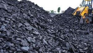 न्यायालय ने कोयले के परिवहन की मंजूरी देने से  किया इनकार