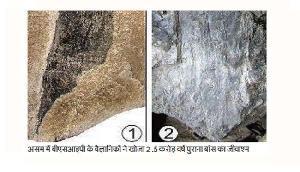 बीजेपी के इस राज्य में मिली ढाई करोड़ साल पुरानी ऐसी चीज, वैज्ञानिक भी हर गए हैरान