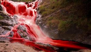 ये है खूनी झरना, जहां से पानी नहीं बहता है खून, देखकर रह जाएंगे दंग