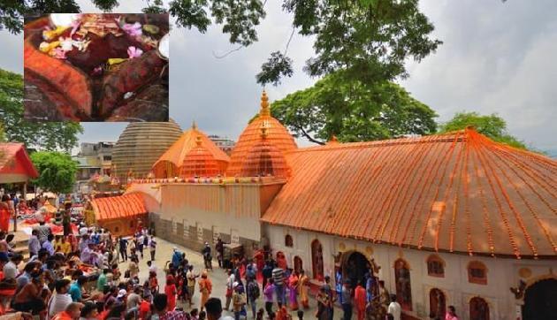 कामाख्या देवी मंदिर के पट खुले, प्रसाद में मिलता है खून से सना कपड़ा