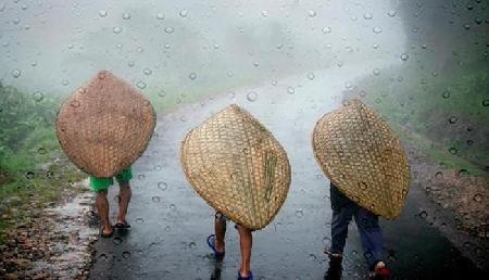 बारिश का असली मजा लेना है तो जाइए इस जगह, होती है सर्वाधिक बारिश