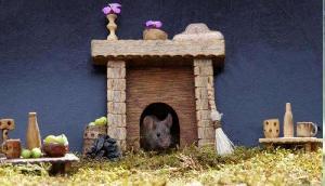 OMG! नहीं देखा होगा चूहों का इतना खूबसूरत घर, यहां की खूबियां आपको हैरान कर देंगी
