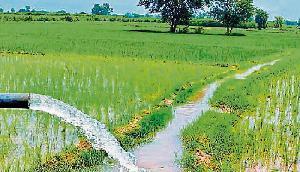 भाजपा सरकार ने पेश किया किसानों से संबंधित रिपोर्ट कार्ड, पढ़िए पूरी खबर