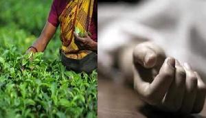 असम में चाय बगान के 73 वर्षीय चिकित्सा अधिकारी की पिटाई के बाद मौत