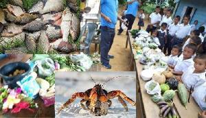 इस राज्य में शिक्षक दिवस पर बच्चों ने गिफ्ट किए केकड़े, मछलियां, कद्दू और सब्जियां