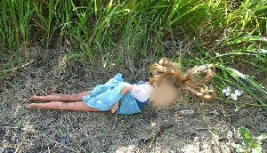 शर्मनाक घटना, खेत में निर्वस्त्र पड़ा मिला 7 साल की मासूम बच्ची का शव, निजी अंगों पर गहरे घाव