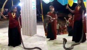 कोबरा सांप को हाथ में लेकर किया गरबा, वायरल वीडियो ने मचाया हंगामा
