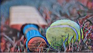 Tennis Cricket का आगाज, इन राज्यों की होगी खेल में भागीदारी