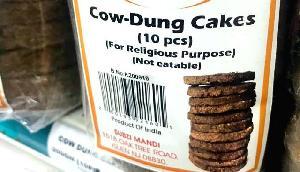 दुनिया ने मानी गाय की महिमा, America में बिक रहे गोबर के कंडे, कीमत जानकर उड़ जाएंगे होश