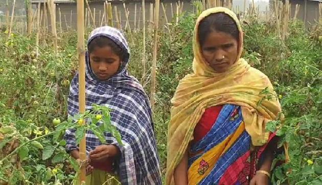 Image result for jabeda begum assam