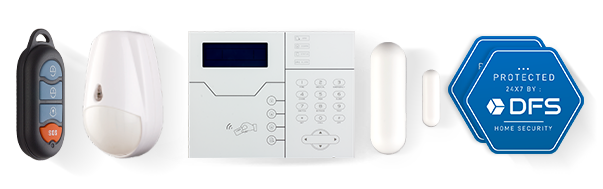 dfs-security-system