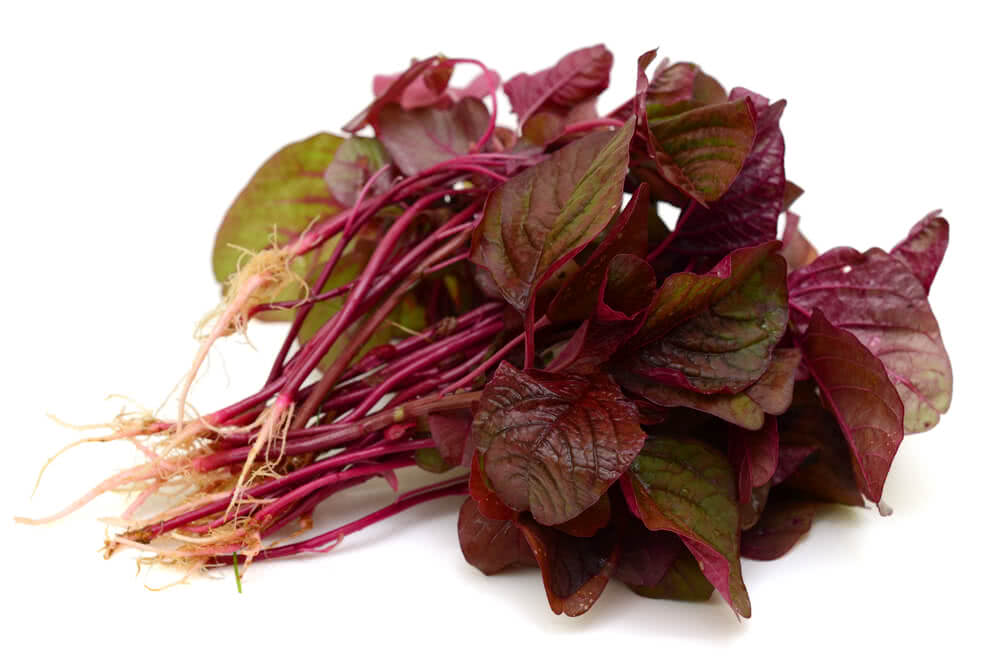 LAL SHAK (Red Spinach)