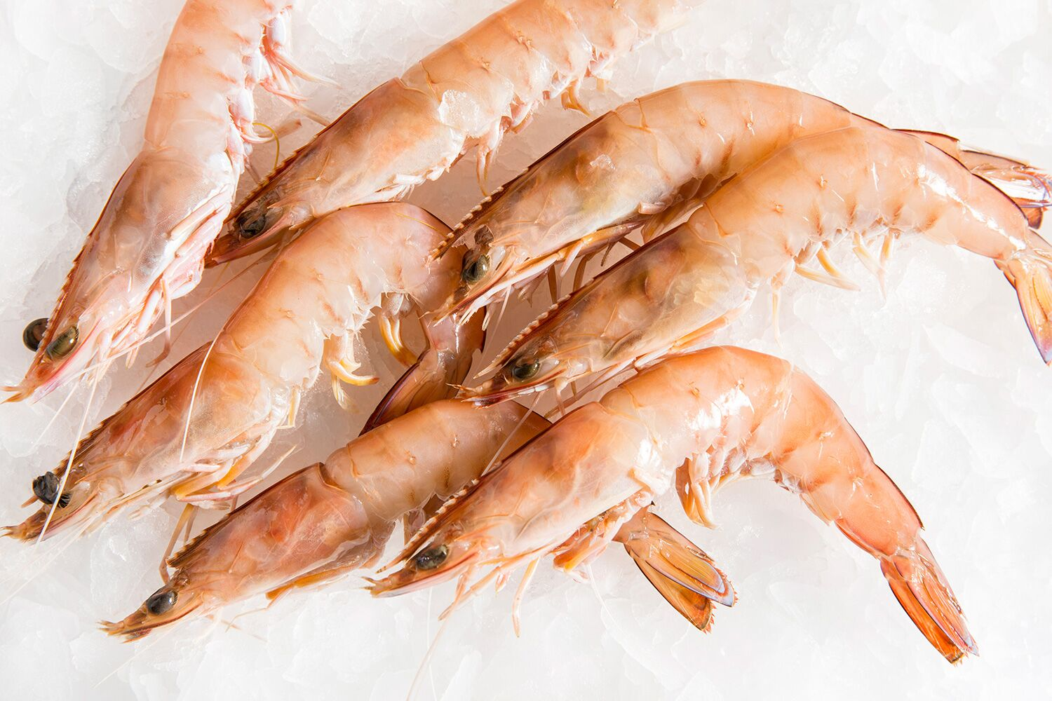 Prawn 16-20 Grade (35-40 Pcs/kg) -H/LESS & TAIL ON