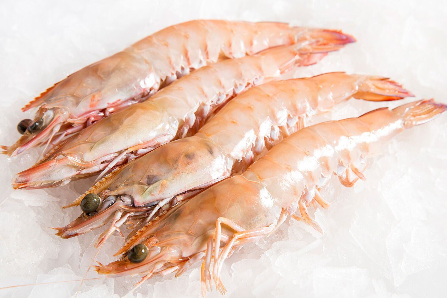 Prawn 13-15 Grade (25-28 Pcs/kg) -H/LESS & TAIL ON