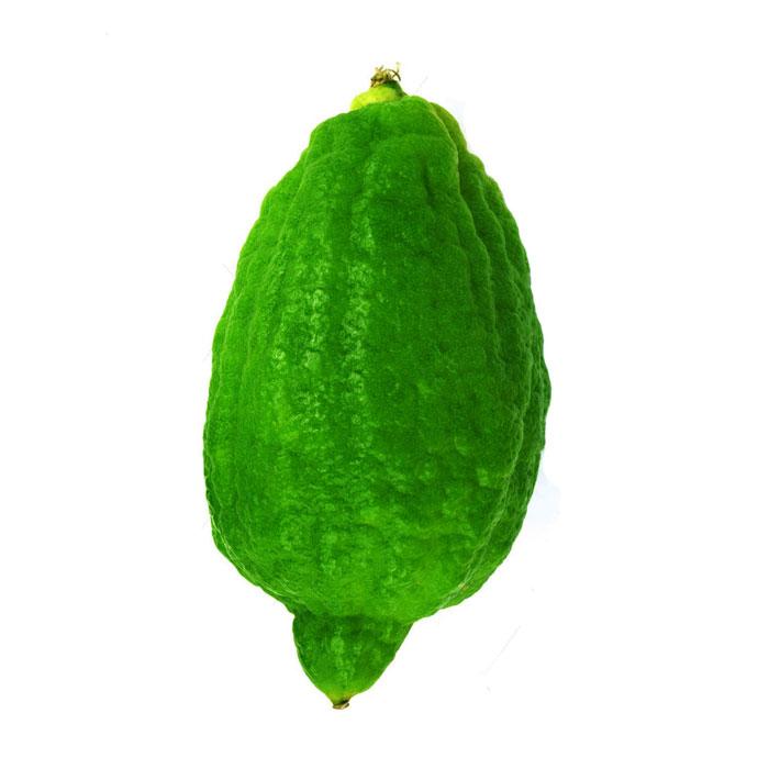 Gondhoraj / Kaffir lime
