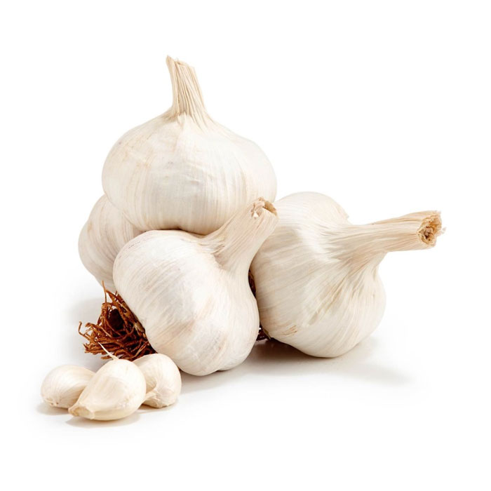 Garlic Best Quality