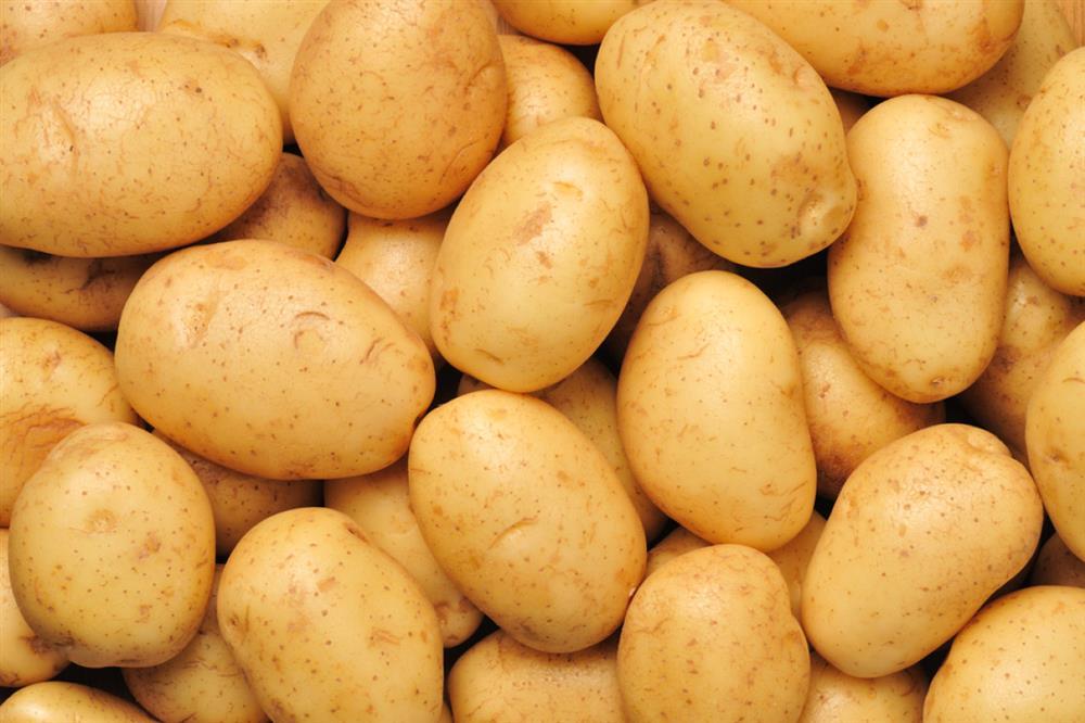 Potato (chandramuki)