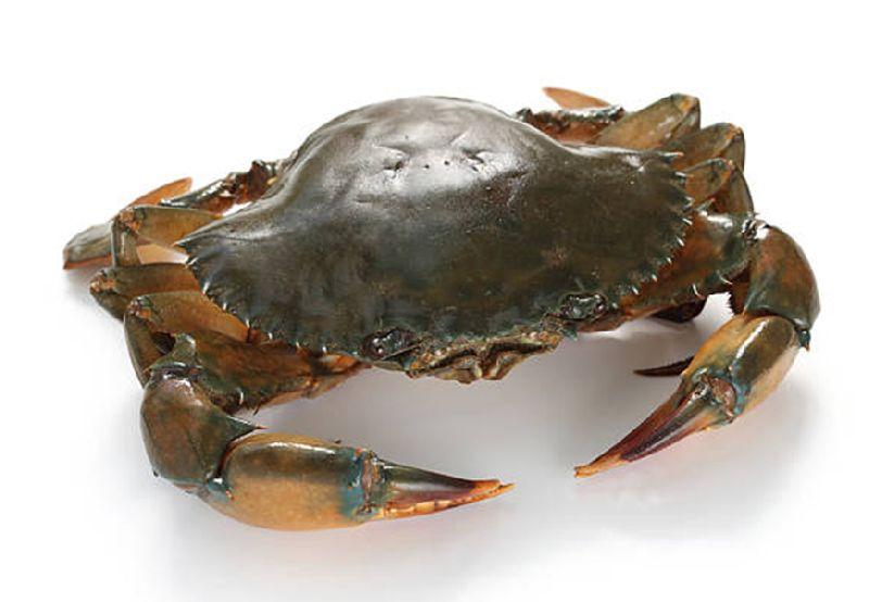 Crab (4-5Pcs Per Kg)