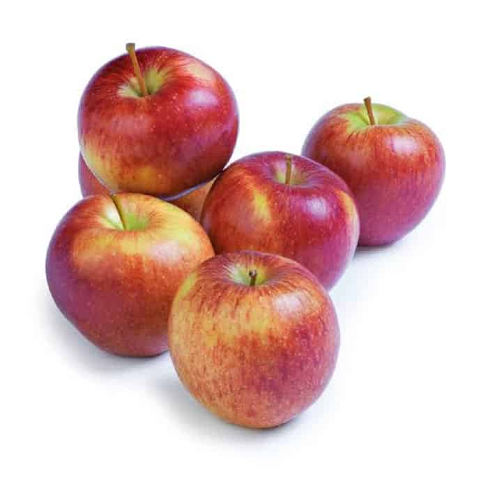 APPLE SIMLA