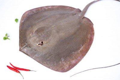 Sankar Fish
