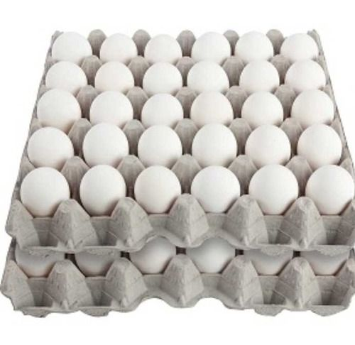 Poultry Egg Tray