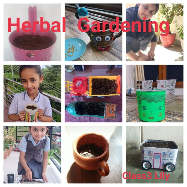 BRUSHING  THE  TEETH AND HERBAL GARDEN ACTIVITY