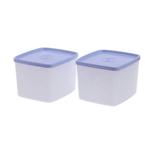 Tupperware - 700 ml Polypropylene Multi-purpose Storage Container  (Pack of 2, Blue, White)
