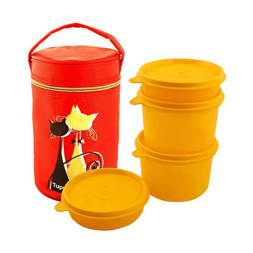 Tupperware Wisker Lunch Box 4 Containers Lunch Box  (1250 ml)