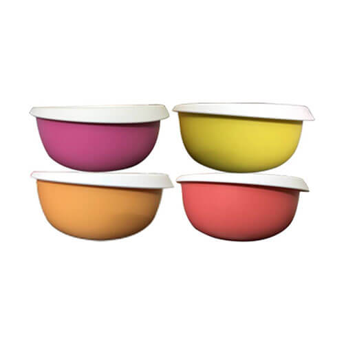 Tupperware Blossom 4 Containers Lunch Box  (550 ml)
