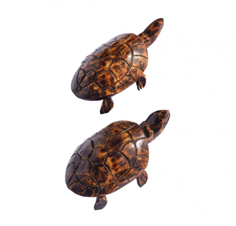 Wooden Tortoise Smaill(#255)-gallery-0