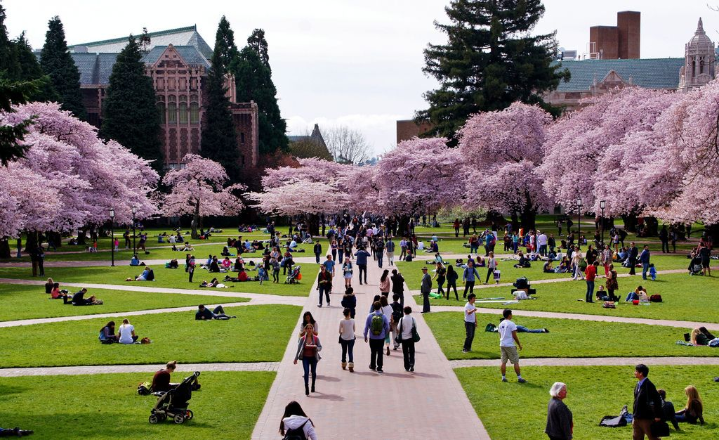 University of Washington Programs