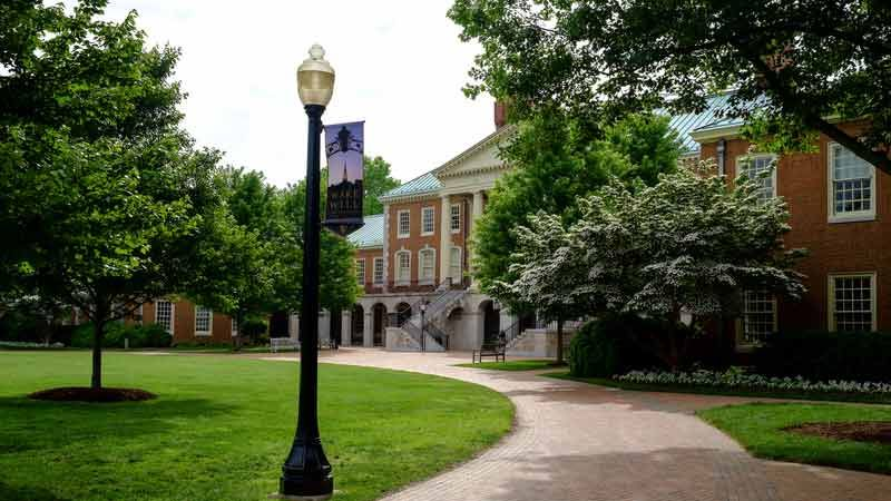 Wake Forest University Programs