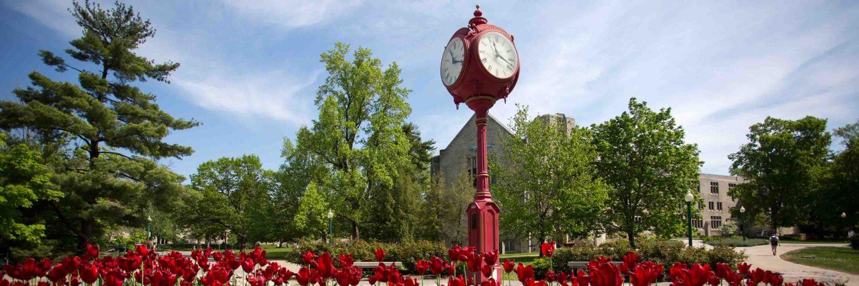 Indiana University Bloomington Ranking