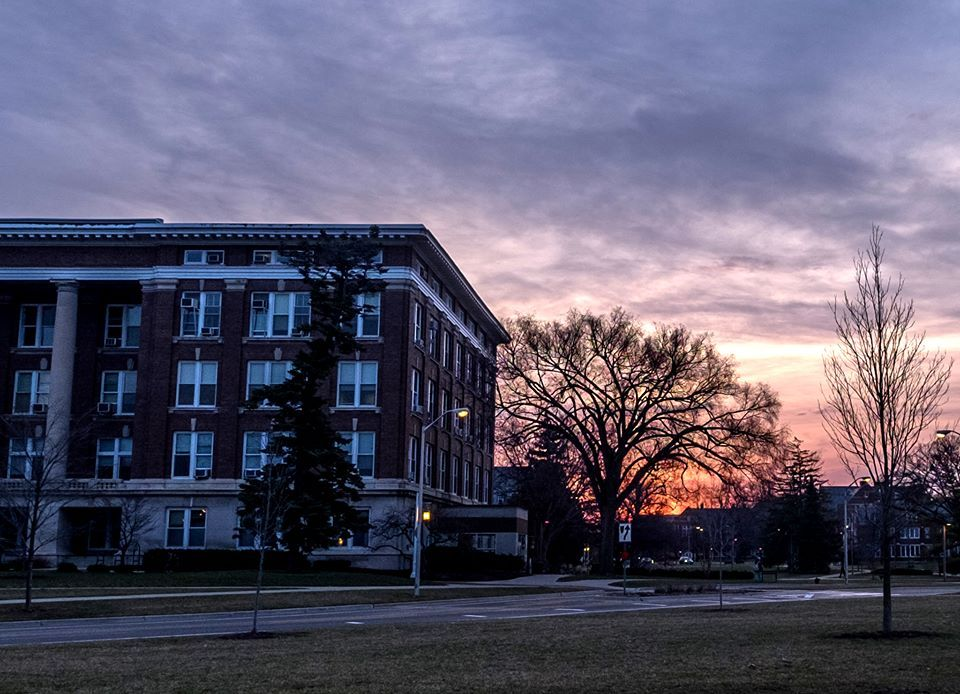 Michigan State University Acceptance Rate