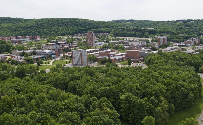 Binghamton University SUNY