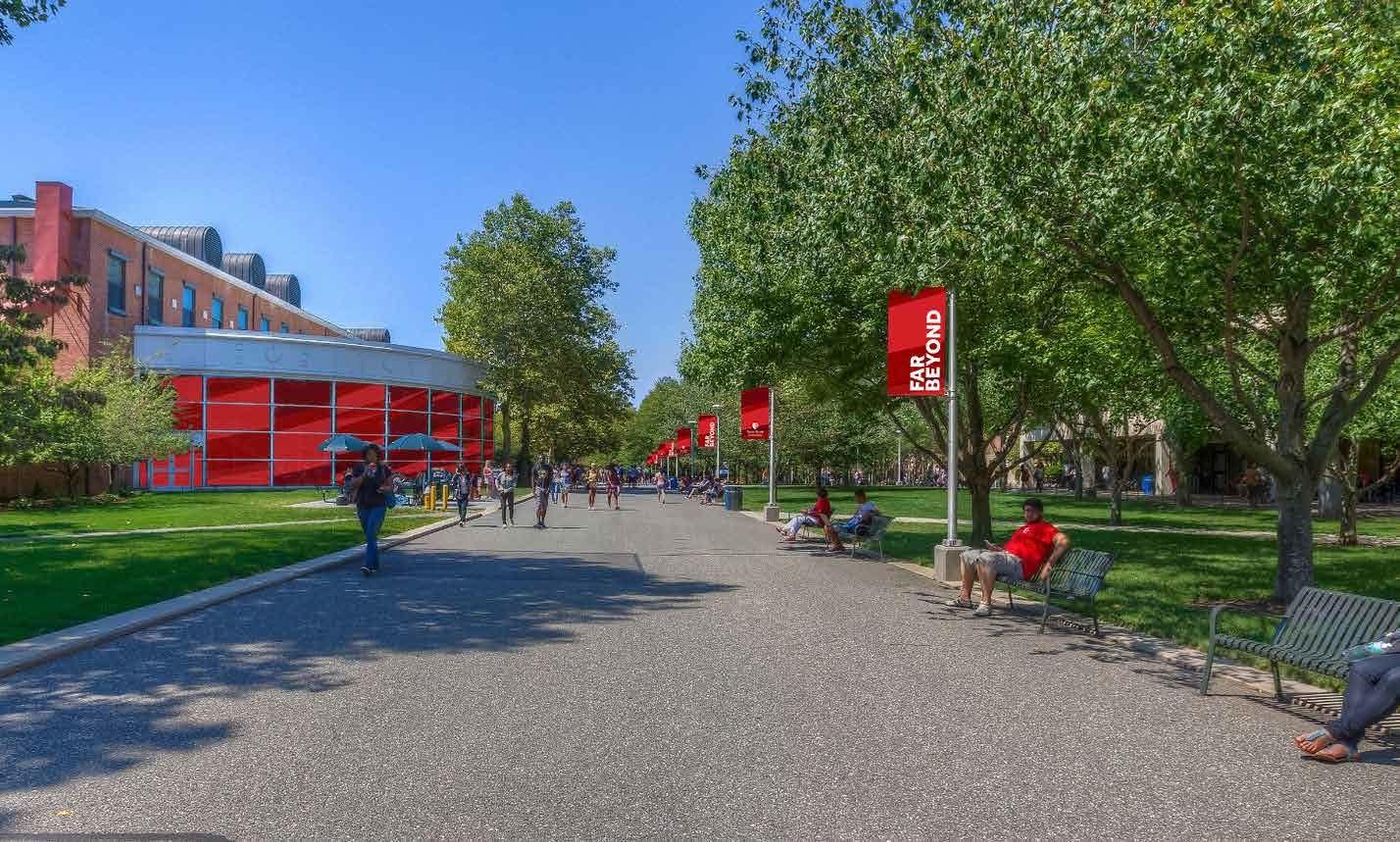 Stony Brook University SUNY Programs