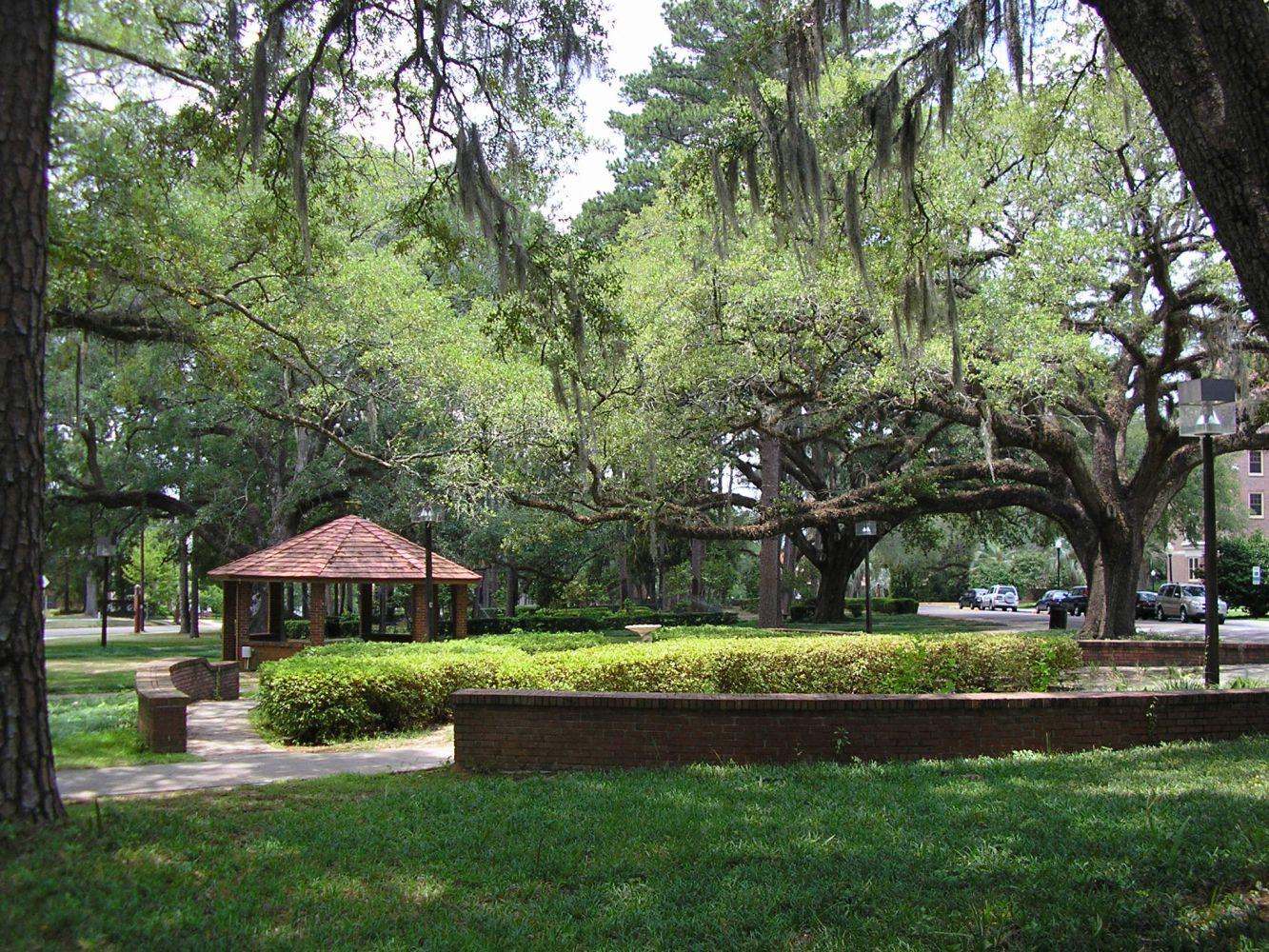 Florida State University Programs