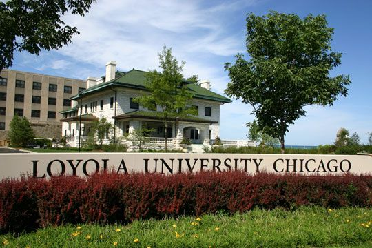 Loyola University Chicago Programs