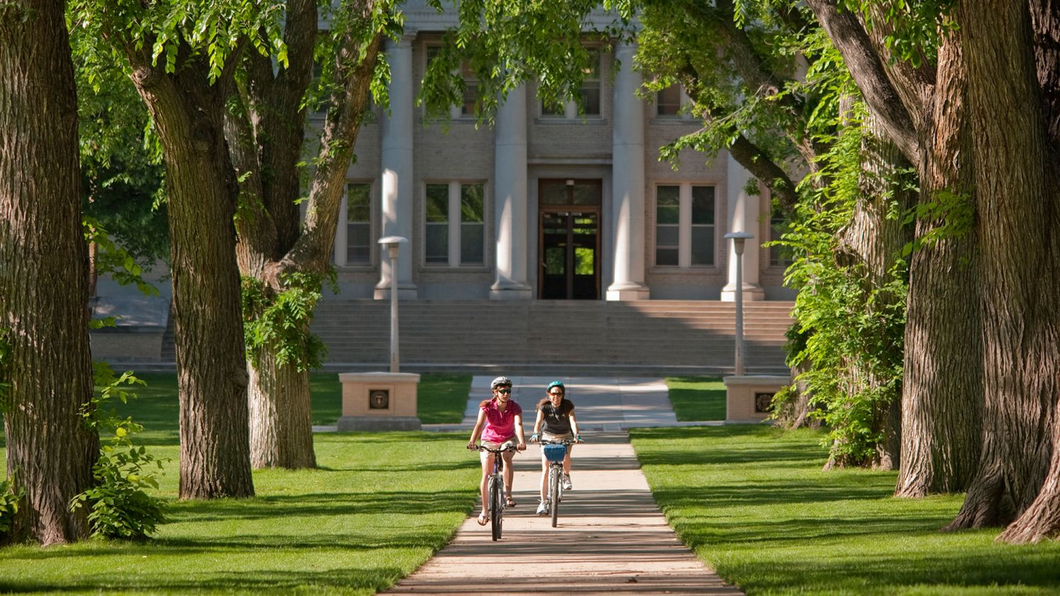 Colorado State University Tuition Fee