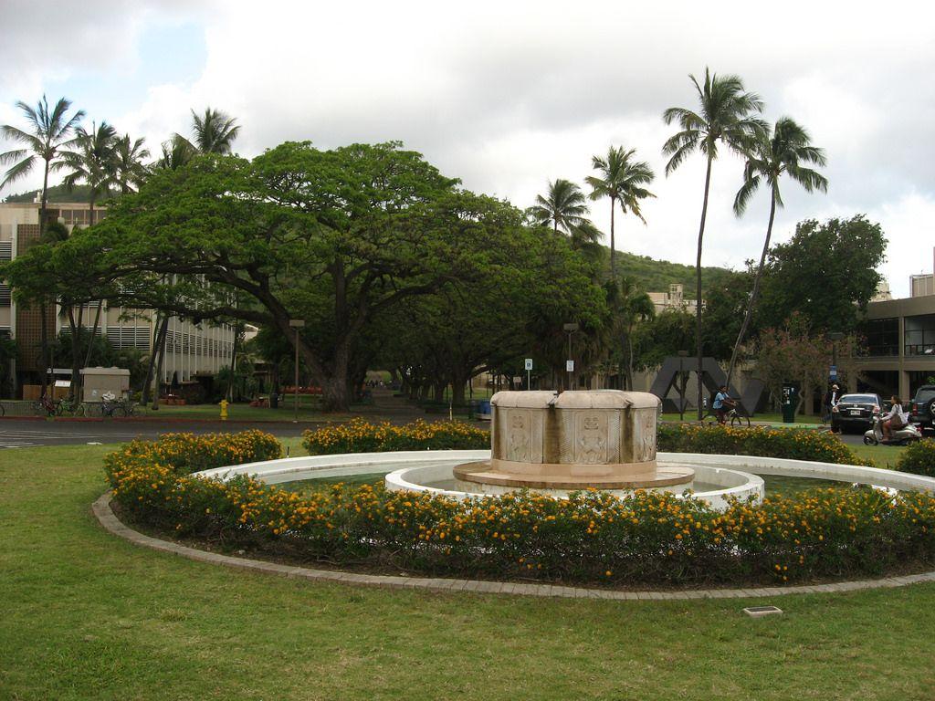 University of Hawaii Manoa Ranking
