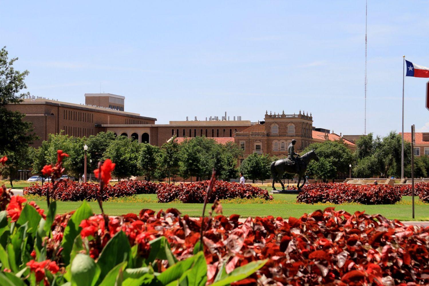 Texas Tech University Programs
