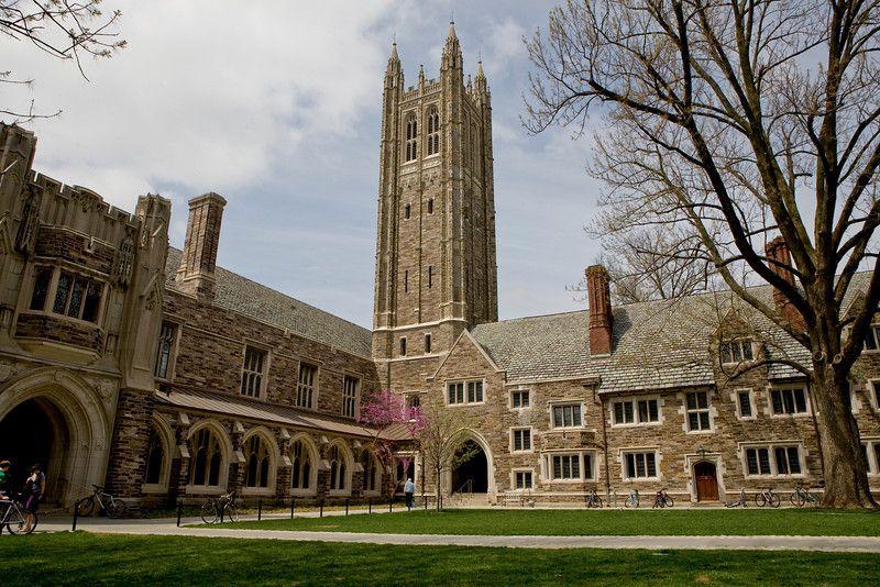 Princeton University Programs