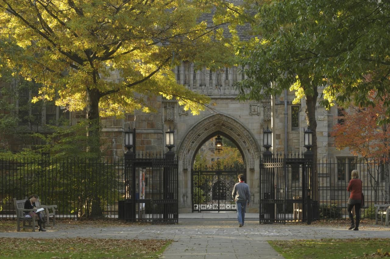 Yale University Programs