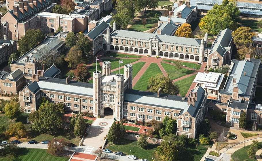 Washington University in St Louis Programs