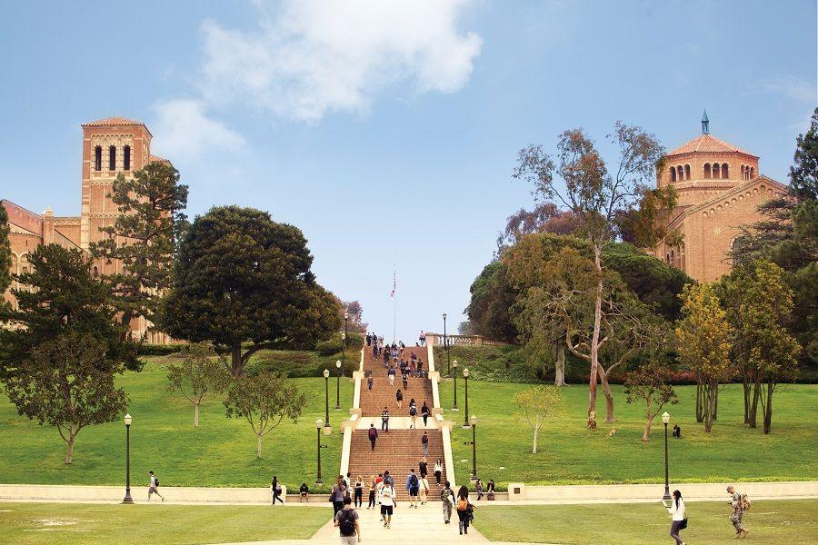 University of California Los Angeles Programs