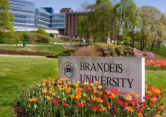 Brandeis University Programs