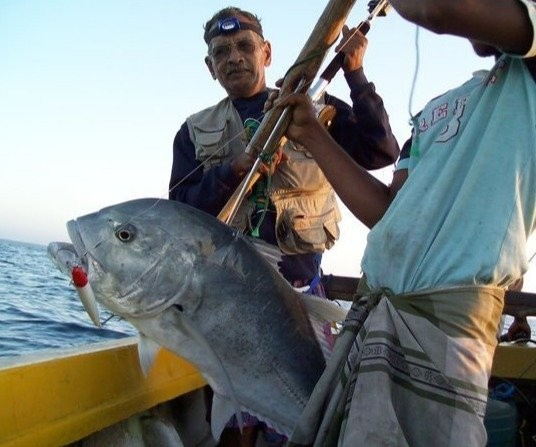 Fishing Charters/trolling in Dehiwala-Mount Lavinia
